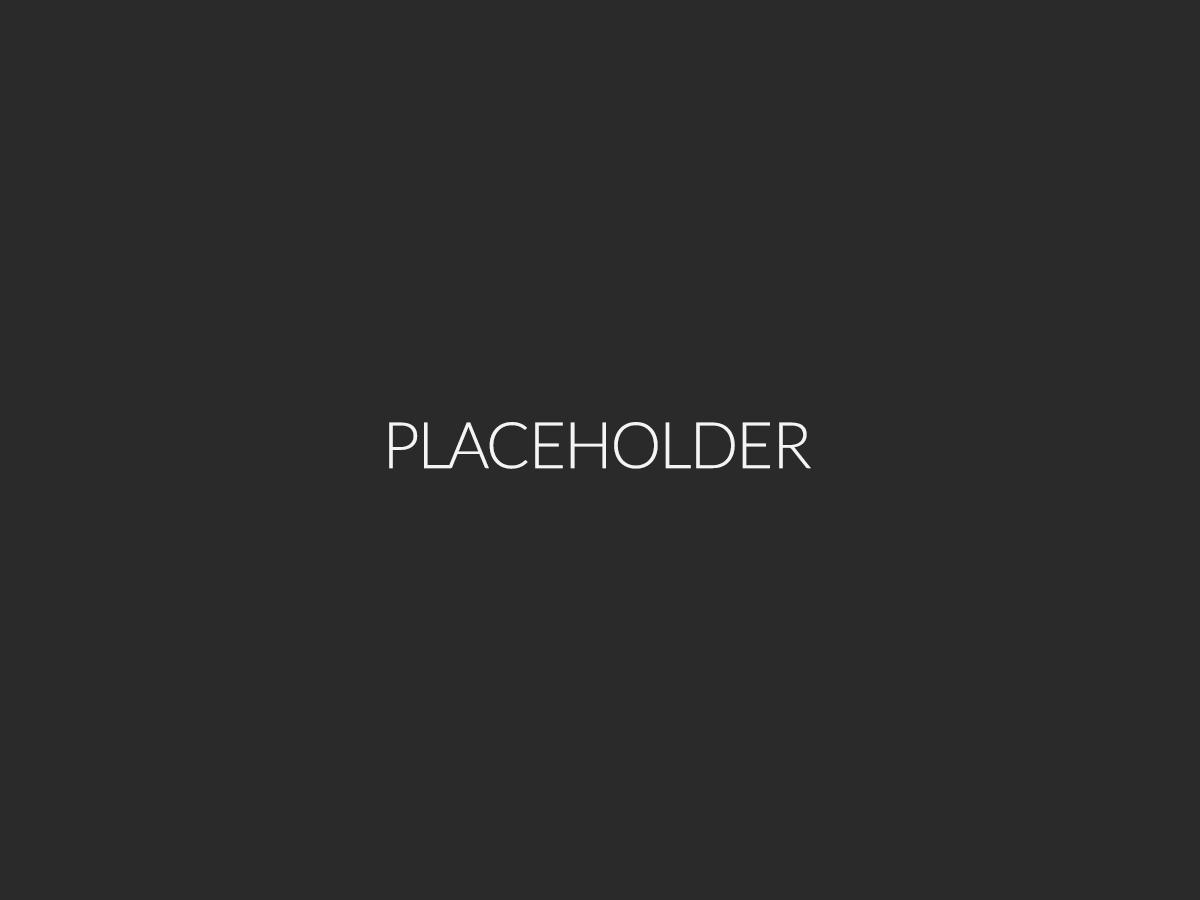 placeholder4